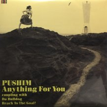 PUSHIM / Anything For You (USED)