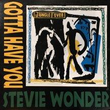 STEVIE WONDER / GOTTA HAVE YOU (USED)
