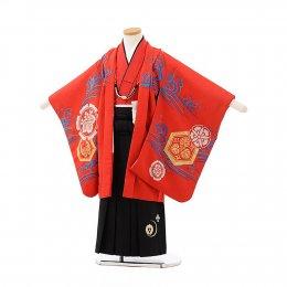 七五三着物五歳男の子レンタル(05C020)赤/富士波に鯉