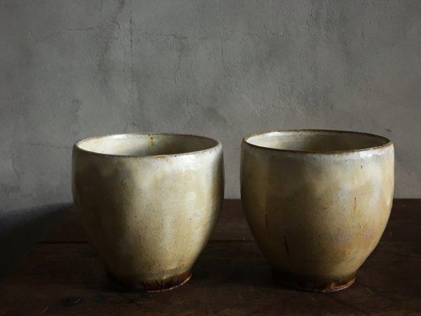 八木橋 昇 黄化粧 フリーカップ