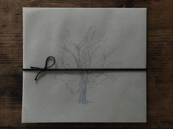 木太 聡 CD A sleeping forest baroque knot