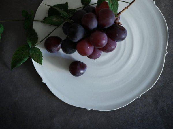照井 壮 キキョウ盤皿 7寸