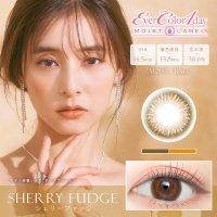 シェリーファッジ - Sherry Fudge