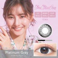 プラチナムグレー - Plutinum Gray