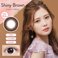 シャイニーブラウン - Shiny Brown