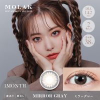 ミラーグレー - Mirror Gray(1month)