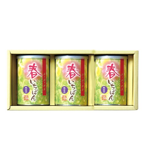 【新茶ご予約】 春いちばん 缶3本セット
