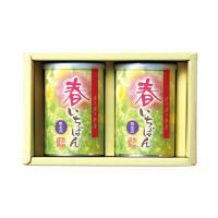 【新茶ご予約】 春いちばん 缶2本セット