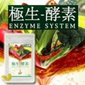 野菜酵素+乳酸菌群でポッコリも野菜不足もスッキリ生活しませんか【極生−酵素エンザイムシステム】