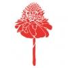 フラダンス用品 色で選びたい レッド(赤)