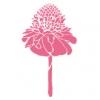 フラダンス用品 色で選びたい ピンク