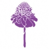 フラダンス用品 色で選びたい パープル(紫)