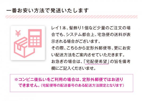 ククイナッツチョーカー ホヌペンダント ブラック【画像6】