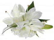 ホワイト(白) アレンジ ヘアクリップ No.1123