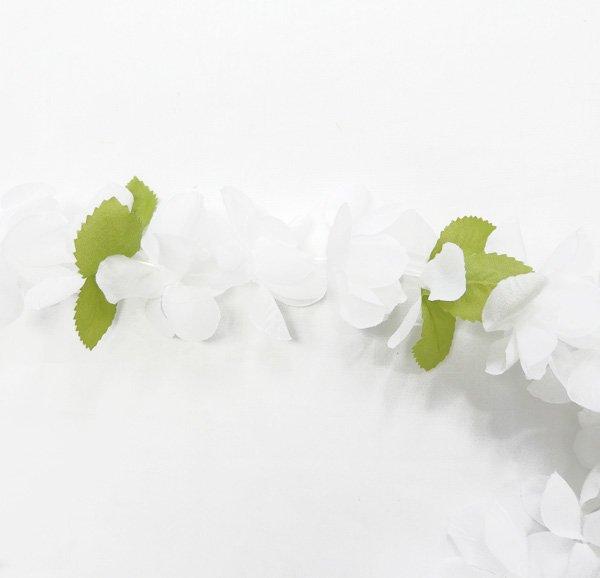 プリンセスレイ ホワイト 【画像2】