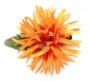 フラダンス用品 色で選びたい アレンジ ヘアクリップ KC-029  スパイダーリリー 色:オレンジ