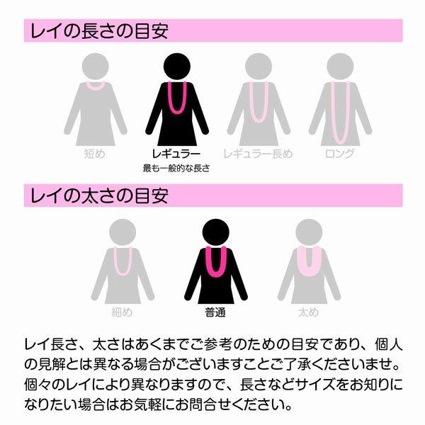 アロハプルメリアシングルレイ 白黄【画像3】