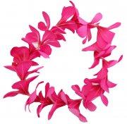フラダンス用品 色で選びたい ニュープルメリアヘッドバンド ピンク