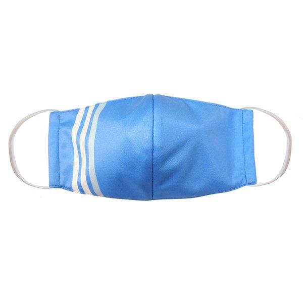 マスク 布製 送料無料 ライン ブルー