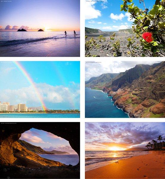 2022 ハワイ手帳  TUTUVIバージョン レフア イエロー(リバーシブル表紙 サンクチュアリ)【画像6】