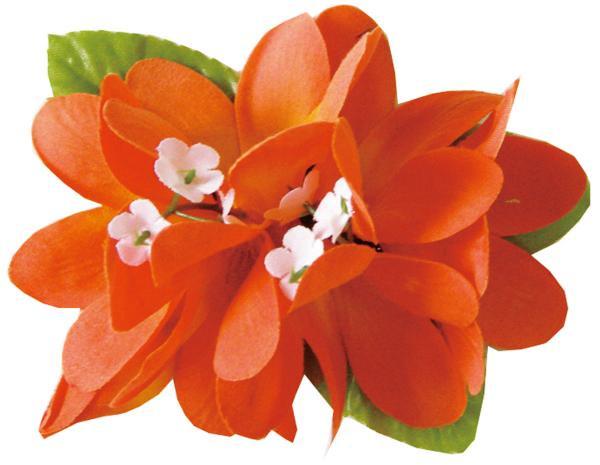 Eプルメリア ヘアクリップ オレンジ