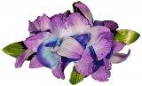 パープル(紫) ニューオーキッドクリップ パープル