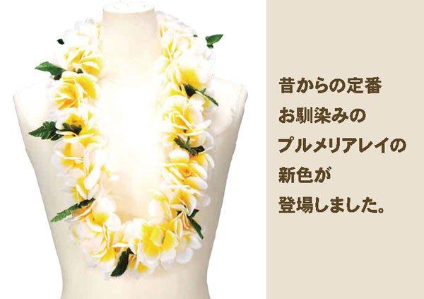 プルメリアWレイ イエロー【画像3】