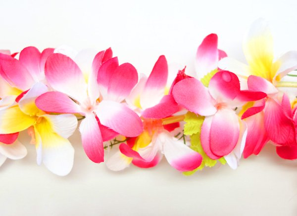 Eプルメリアレイ ピンク・白・黄【画像2】