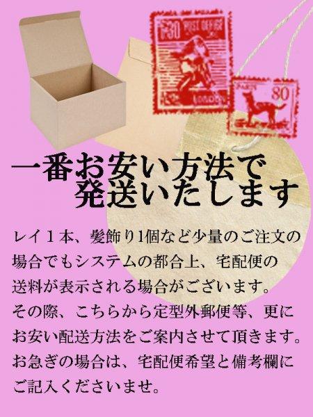 DVD『常磐音楽舞踊学院50周年記念 東京公演 イムア・未来へ』【画像7】