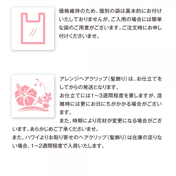 プルメリアプナレイ オレンジ【画像5】