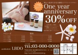 【美容サロン】リゾート・南国風・プルメリア  チラシ BW6000円