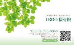 【シンプル名刺】緑でさわやか。クリニック系におすすめ