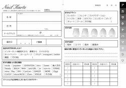 ベーシック ネイルサロン用カルテ(500枚入!)