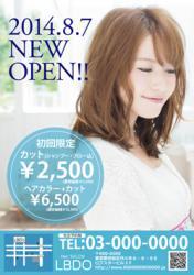 【かわいいチラシ】定額制チラシ・フライヤー(ブルー)3500円