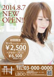 【かわいいチラシ】定額制チラシ・フライヤー(ブラウン)3500円