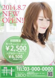 【かわいいチラシ】チラシ・フライヤー(グリーン)3500円