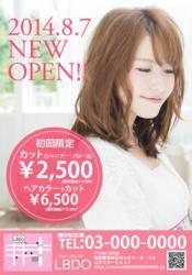 【かわいいチラシ】チラシ・フライヤー(ピンク)3500円
