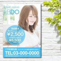 PS002_BL  A1ポスター| 料金・写真入り(BL)