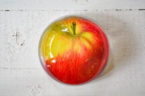 ペーパーウェイトドーム リンゴ