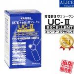 【送料無料】 UC-IIエクセレント (60粒)  ( 非変性2型コラーゲン UC-2 UC2 UCII II型 2型 非変性活性 )