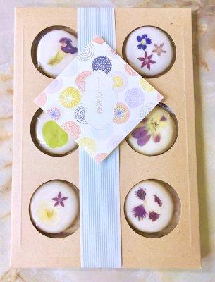 美食花クッキー6枚セット