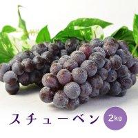 (送料無料)津軽ぶどう村のスチューベン(2kg)