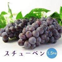 (送料無料)津軽ぶどう村のスチューベン(1.5kg)