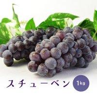 (送料無料)津軽ぶどう村のスチューベン(1kg)