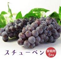 (送料無料)津軽ぶどう村のスチューベン家庭用約5kg(S〜2Lサイズ混合)