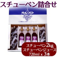(送料無料)津軽ぶどう村のスチューベン詰合せ(スチューベン2kgとジュース720mlx3本)
