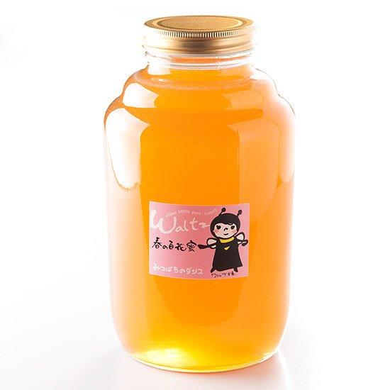 ワルツ:春の蜜 2.4kg