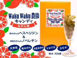 みかん飴「WAKUWAKU農園キャンディ」100g