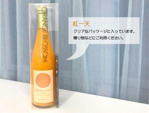 紅一天(こういってん)樹上完熟みかん果汁100%ストレートジュース[600ml]