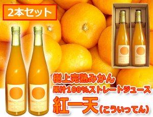 紅一天【600ml×2本】樹上完熟みかん果汁100%ストレートジュース[箱入り]